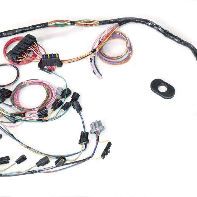 Ford 302 Wiring Harness - Wiring Diagrams  L Efi Wiring Harness on